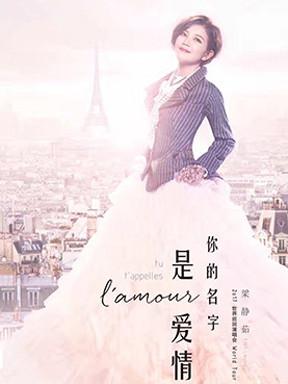 梁静茹·你的名字是爱情2017世界巡回演唱会成都站