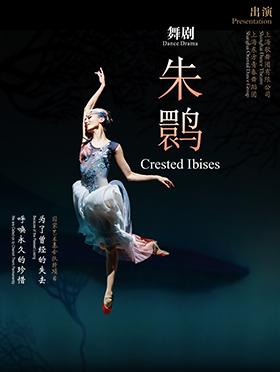 【买二赠一】上海歌舞团舞剧《朱鹮》-深圳站