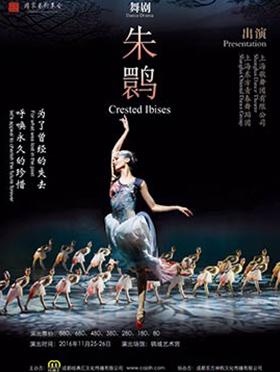 上海歌舞团舞剧《朱鹮》 成都站