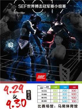 2017 SEF世界搏击冠军赛小组赛
