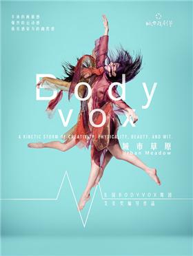 2017第四届城市戏剧节 艾美奖编导作品 美国BodyVox舞团《城市草原 Urban Meadow》-深圳