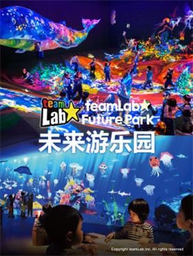 大型沉浸式科技互动艺术展teamLab-未来游乐园