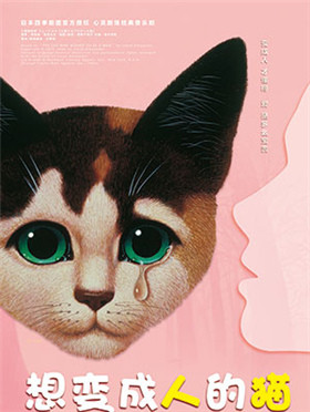 【小橙堡】家庭音乐剧四季剧团首部海外授权中文版音乐剧《想变成人的猫》--深圳