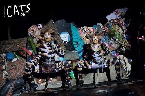 这是中国观众等了十年的音乐剧,《猫》开票啦!