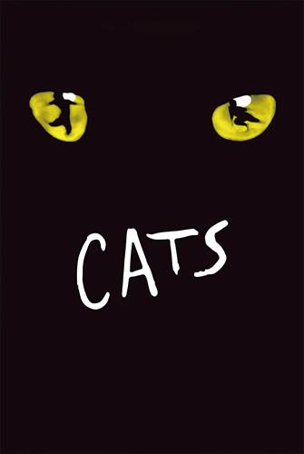 貓 Cats