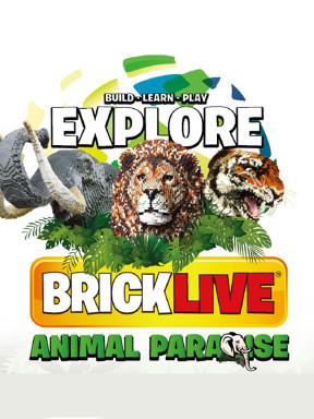 BRICKLIVE (砖享)动物王国环保展--鸟巢站