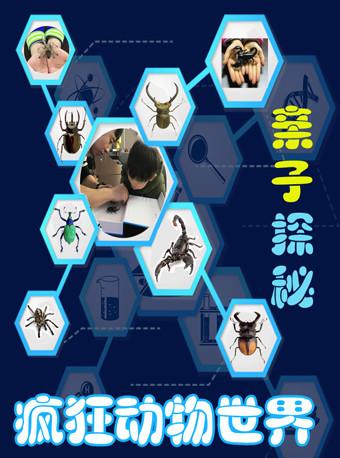 探秘疯狂动物世界,昆虫标本DIY-北京站