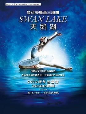 2018 河北·石家庄国际演出季·尚宾城之夜——经典芭蕾天鹅湖