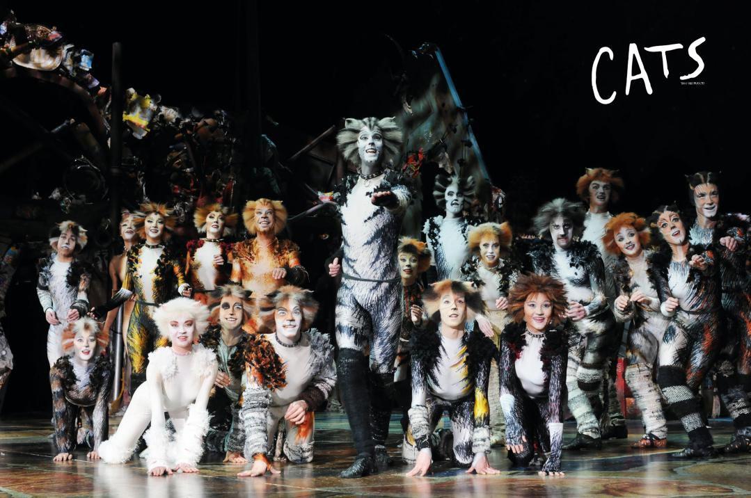 英国原版引进音乐剧《猫》成都站二轮预售即将开启!