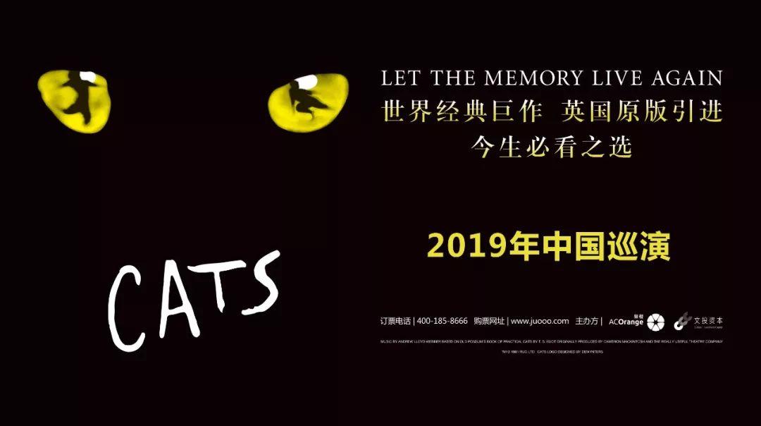 """首演!杰里科貓燃爆魔都!2019中國""""貓""""年震撼回歸!"""