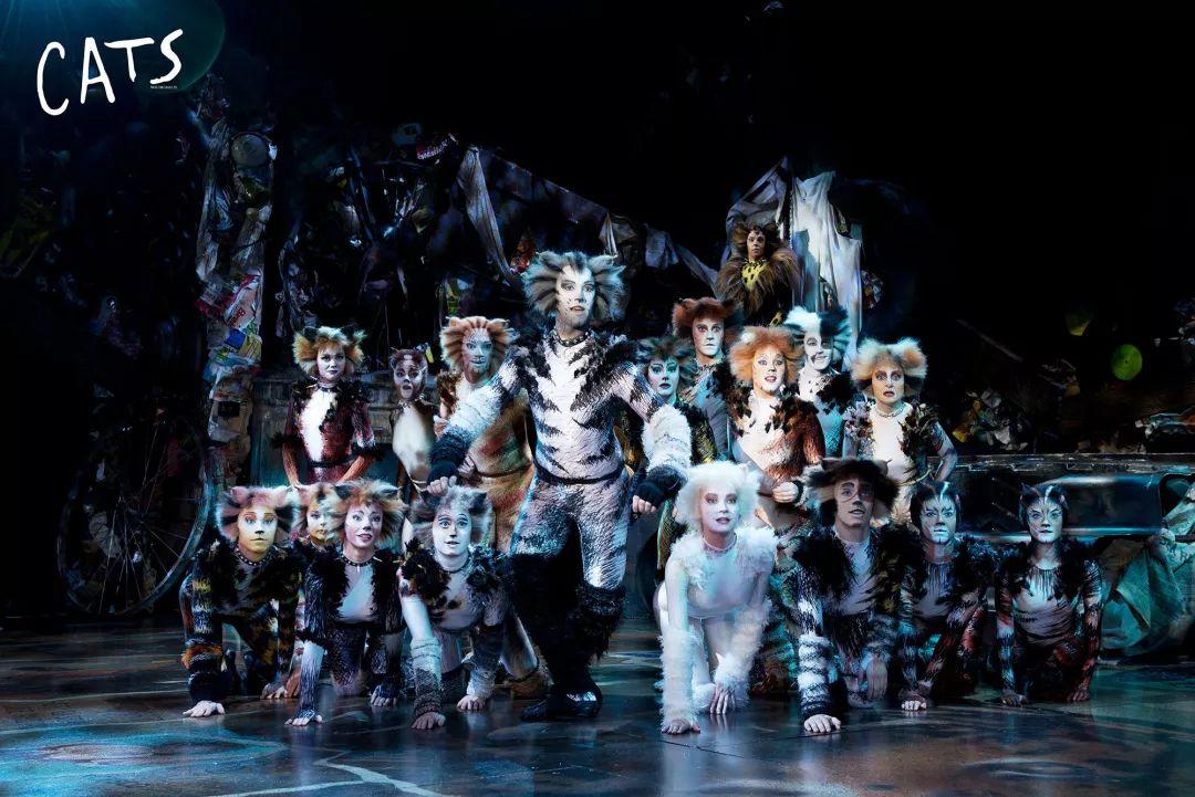 世界經典原版音樂劇《貓》武漢火熱收官!下一站北京!