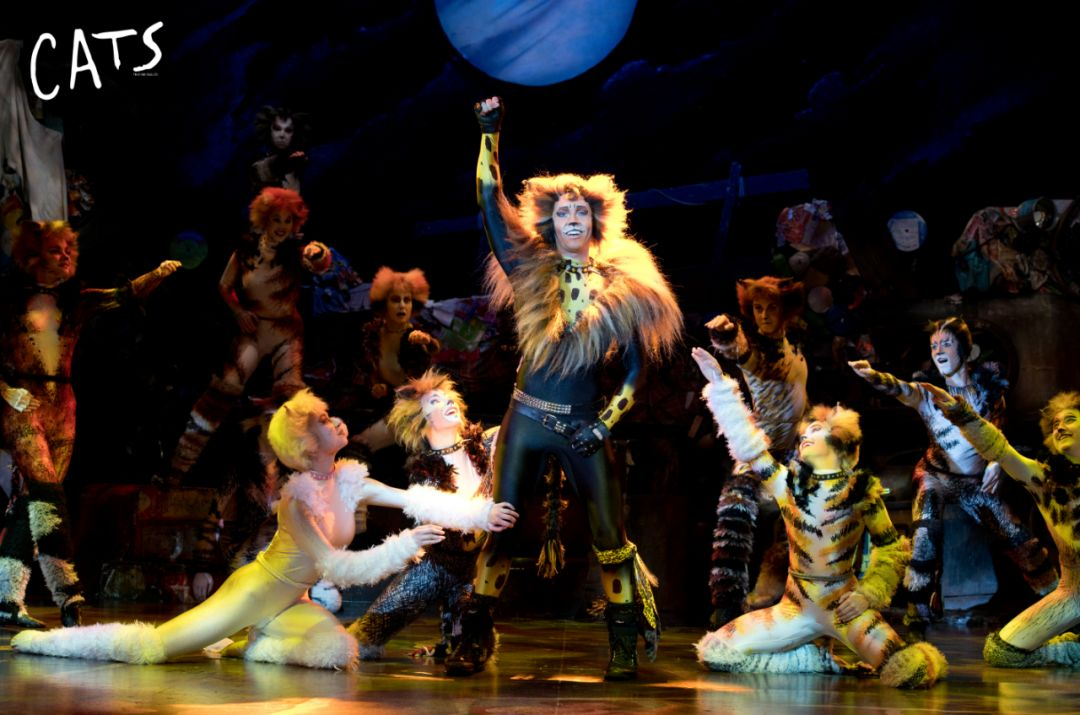 上海開票+雙11超值套票丨《貓》2020年盛譽歸來,新劇院get吸貓新體驗!