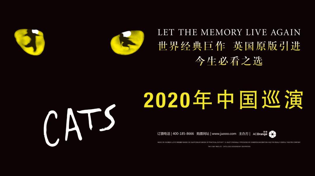 """重磅首站开票丨世界经典原版音乐剧《猫》震撼延续,2020年再谱新难忘""""回忆""""!"""