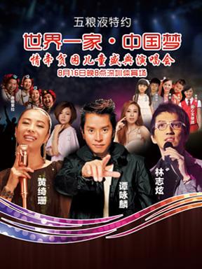 五粮液特约 世界一家·中国梦 情牵贫困儿童盛典演唱会
