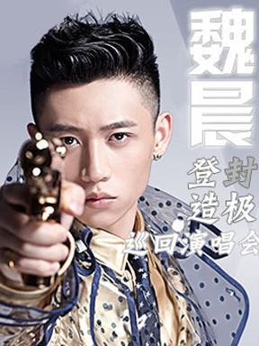 "2014MusicRadio魏晨""登封造极""巡回演唱会武汉站"