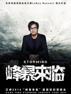 """汪峰2014""""峰暴来临""""超级巡回演唱会 杭州站"""