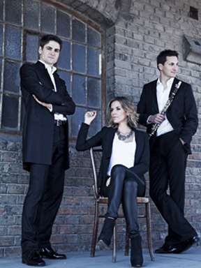 2014年市民音乐会—维也纳爱乐Amerling四重奏