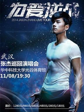 2014张杰为爱逆战巡回演唱会 武汉站