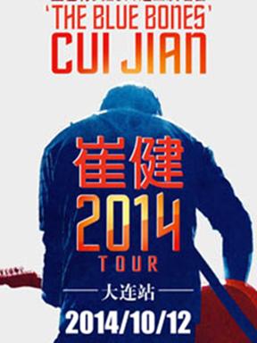 2014蓝色骨头崔健演唱会中国巡演 大连站