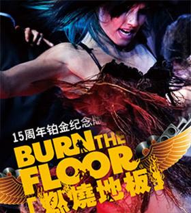 风靡全球的舞蹈巨作《燃烧地板》铂金纪念版