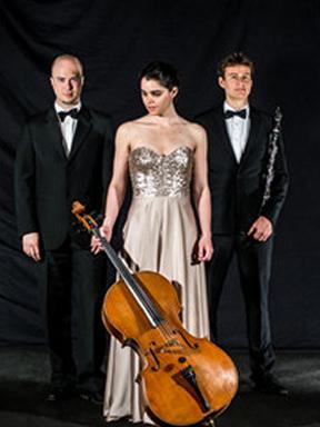 未来大师系列 奥地利/瑞士—窗之韵大提琴/单簧管/钢琴三重奏音乐会