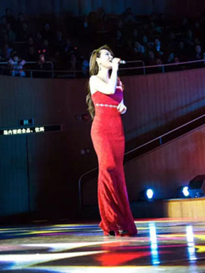 玫瑰人生系列 《月亮代表我的心》 邓丽君金曲演唱会