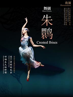 上海歌舞团舞剧《朱鹮》—北京站
