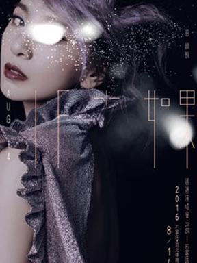 2016「如果」PLUS 田馥甄演唱会 石家庄站